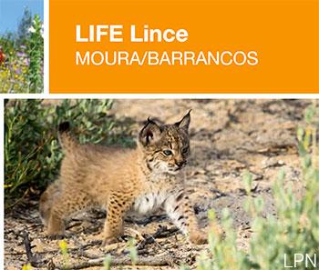 LIFE Lince Moura/Barrancos